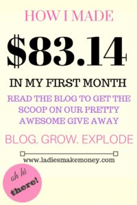 Income blog report- how i made money on my first month